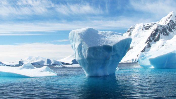 The Icebergs and the Sea, el museo marino que buscará crear conciencia ambiental