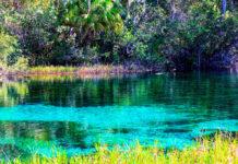 Por esta razón la laguna de Bacalar podría perder sus colores