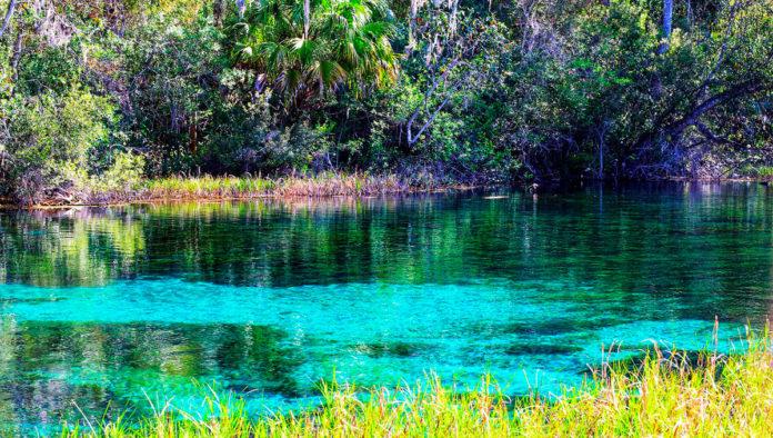 Aguas termales San Bartolo, el spa natural milagroso de Veracruz