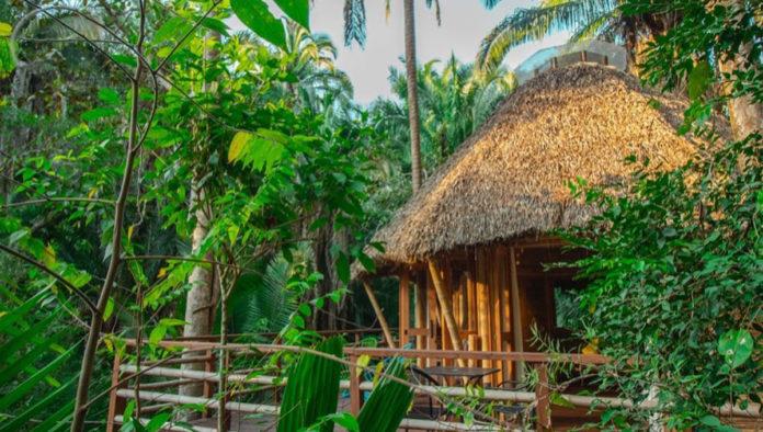 aldea bamboo cabañas
