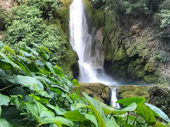 Cascada el Aguacate, un paisaje con mucho sabor que baña el abismo