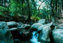 Glamping: acampar con glamour en Valle de Guadalupe