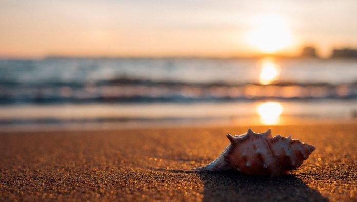 Playa el Tecolote, el mejor secreto de Baja California Sur