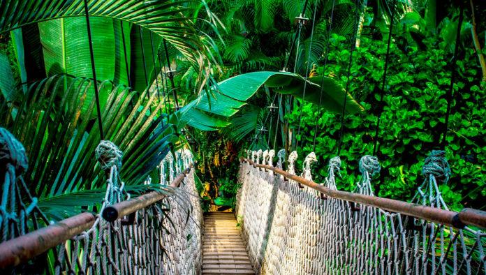 Puente de los Aluxes : La leyenda que cuenta la comunión entre los hombre y los seres elementales