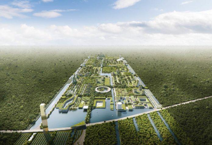 ¿Un bosque inteligente en México? Así será Smart Forest City
