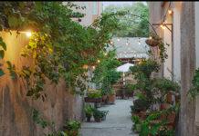 Jardín Botánico Culiacán, un oasis verde dedicado a la conservación natural