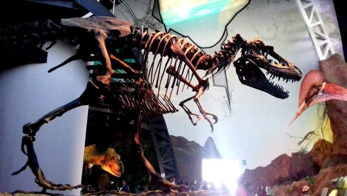 Museo de la Evolución Tehuacán en Puebla