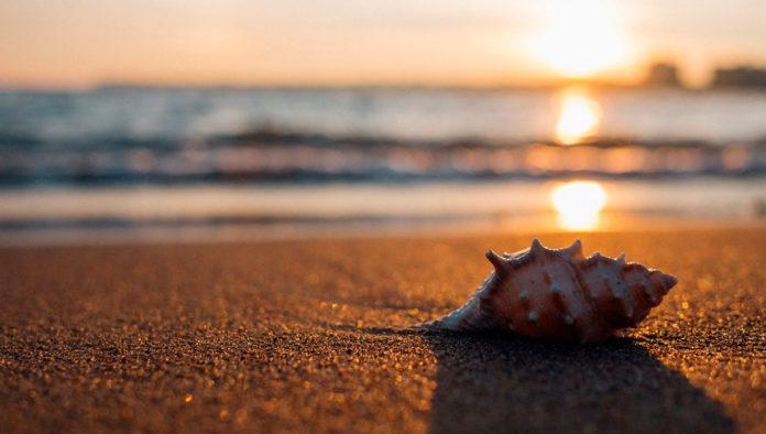 Playa Montepio