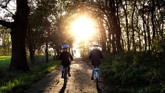 Rutas para andar en bicicleta en la CDMX, ¿cuáles son las mejores?