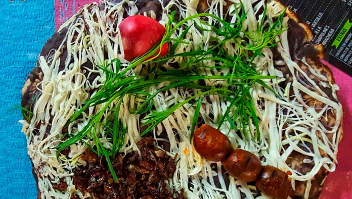 Tlayudas El Negro: Todo el sabor de Oaxaca en un solo lugar