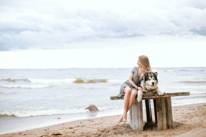 4 playas Pet Friendly para viajar con tu mascota por el mundo