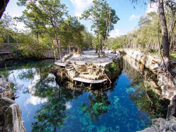 Cenotes Casa Tortuga, un edén natural en la Riviera Maya