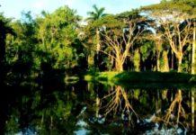 Reserva Ecológica Yu-Balcah en Tabasco