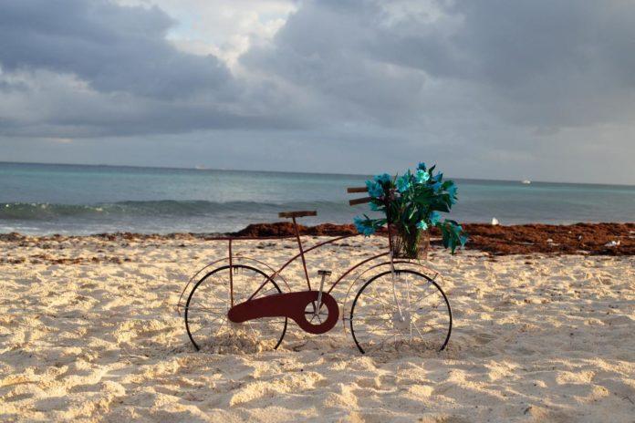 Sargazo: ¿Qué es y por qué llega a Quintana Roo?