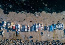 Turquía fenómeno moco marino