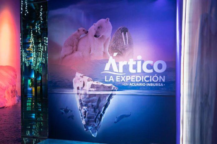 Ártico, La Expedición: la expo que no te puedes perder en el Acuario Inbursa