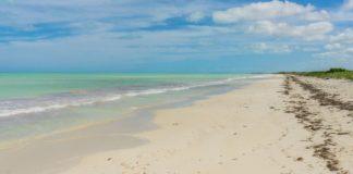 Cancunito: ¿Cómo llegar a esta increíble playa virgen de Yucatán?