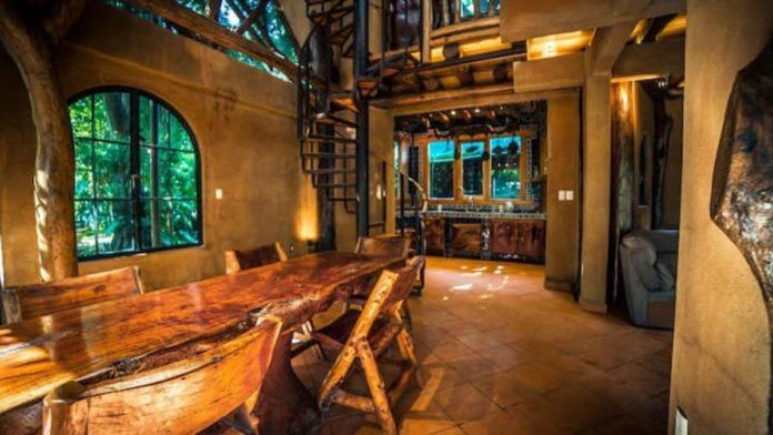 Casa del árbol Amacuzac, un refugio mágico de Morelos