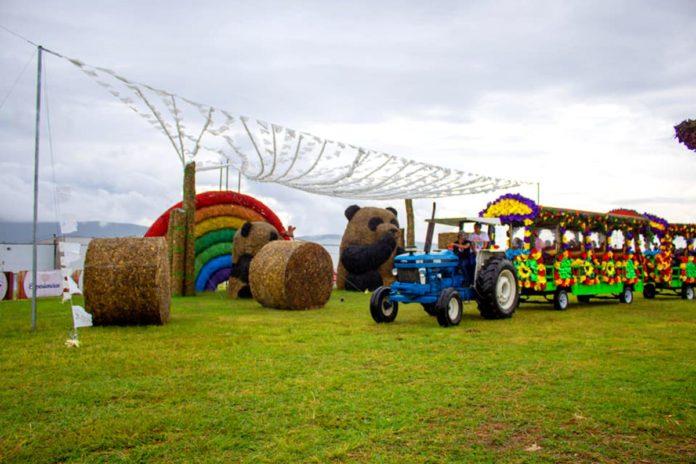 Festival de Paja, un mundo de esculturas gigantes en Atlixco