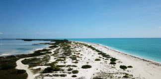 Isla Blanca en Quintana Roo