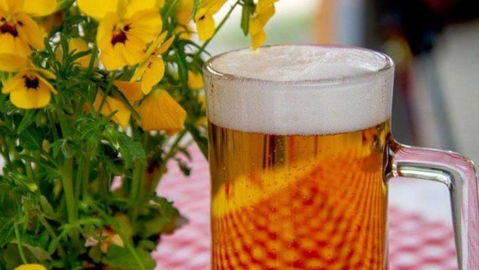 cerveza receta