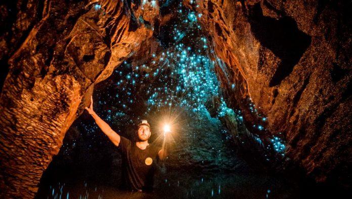Cuevas de Waitomo