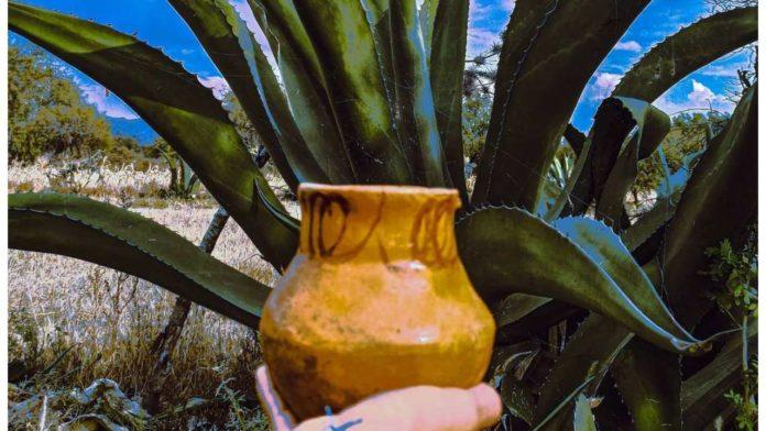 mega pulquefest