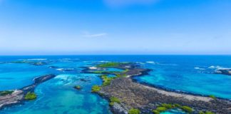"""Parque Nacional Isla Isabel, la pequeña """"Galápagos Mexicana"""""""