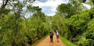 Reserva Ecológica Cuxtal