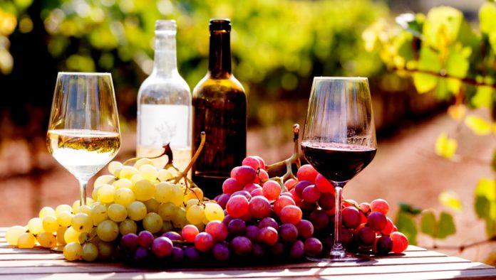 Vendimias de la Ruta del Vino