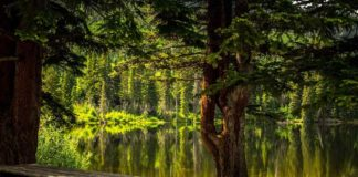 Lago de Camécuaro: El oasis de color turquesa que esconde Michoacán