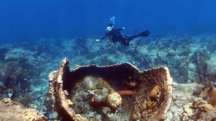 scorpion reef